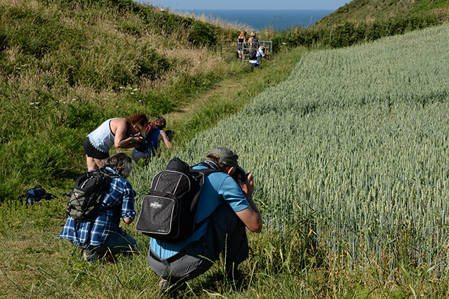 Mumbles coast path Workshop 2018 phil holden
