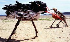 The Birds artist Sara Holden oystercatcher and bar tailed godwit